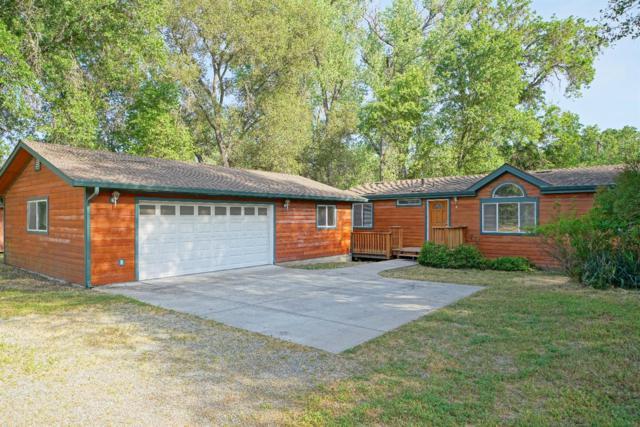6500 Goodrich Lane, Placerville, CA 95667 (MLS #19029488) :: Heidi Phong Real Estate Team