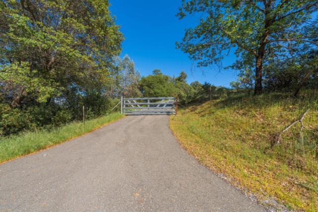 0 Gopher Flat, Sutter Creek, CA 95685 (MLS #19029835) :: eXp Realty - Tom Daves