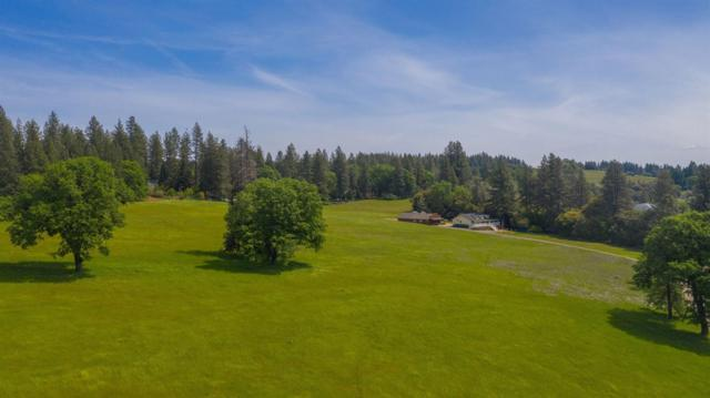 0 Hale Road, Volcano, CA 95689 (MLS #19029858) :: eXp Realty - Tom Daves