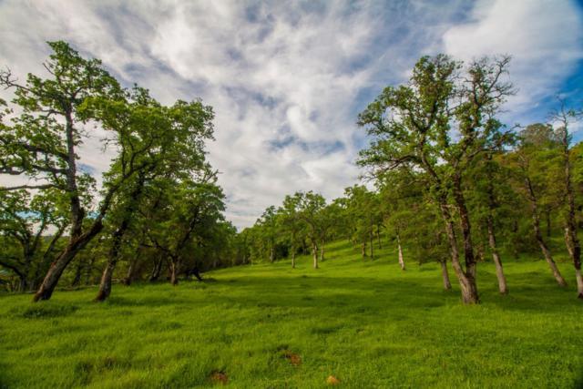 6-Ranch Dutch Flat Trail, Smartsville, CA 95977 (MLS #19030100) :: Keller Williams - Rachel Adams Group