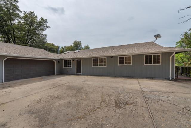 17781 Redberry Lane, Jackson, CA 95642 (MLS #19030613) :: eXp Realty - Tom Daves