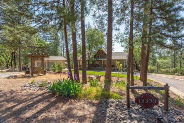 15390 Rebel Road, Sutter Creek, CA 95685 (MLS #19030771) :: eXp Realty - Tom Daves