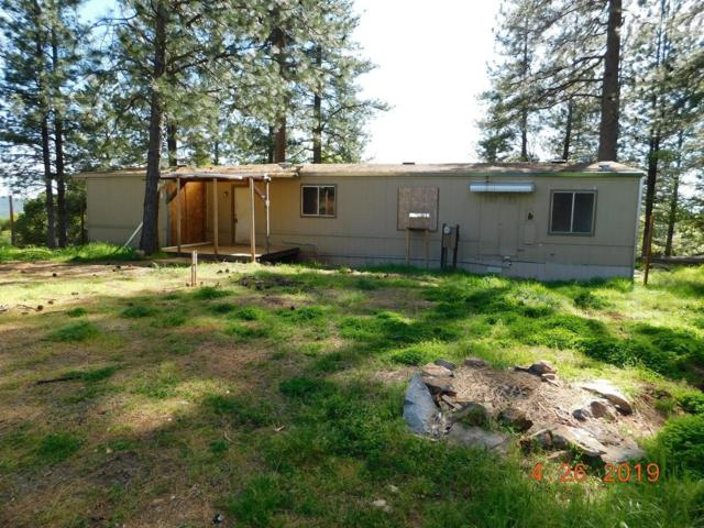 1319 Higdon Road, West Point, CA 95255 (MLS #19030937) :: The MacDonald Group at PMZ Real Estate