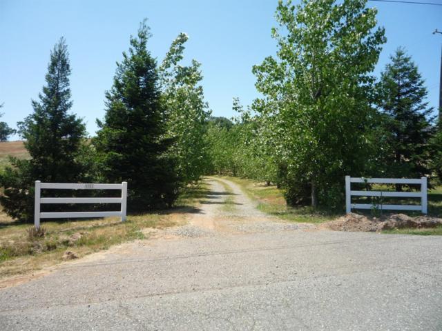 9701 Rastro, La Grange Unincorp, CA 95329 (MLS #19031780) :: The MacDonald Group at PMZ Real Estate