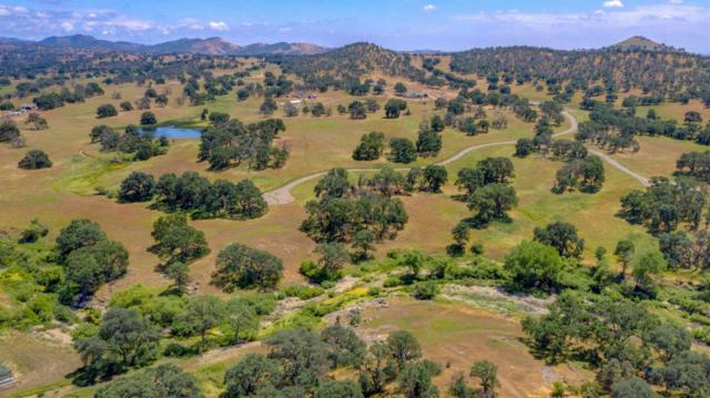 2231 Thunder Road, Catheys Valley, CA 95306 (MLS #19032117) :: eXp Realty - Tom Daves