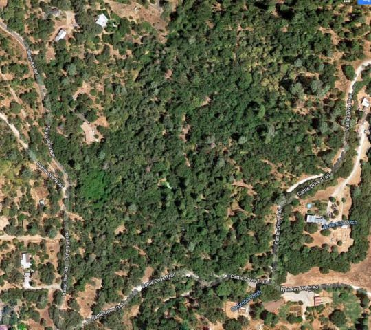 12000 Cattle Drive Trail, Columbia, CA 95310 (MLS #19032178) :: The MacDonald Group at PMZ Real Estate