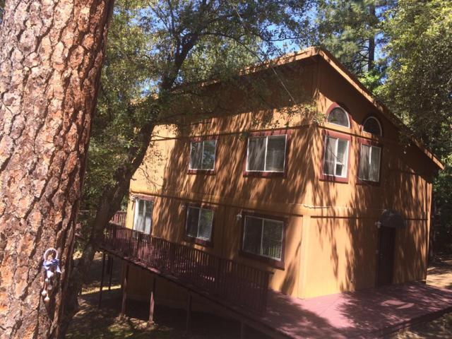 22781 Red Corral Road, Pioneer, CA 95666 (MLS #19032296) :: Dominic Brandon and Team
