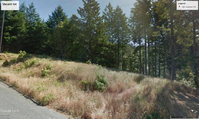 296 Seafoam Road, Whitethorn, CA 95589 (MLS #19032350) :: Deb Brittan Team