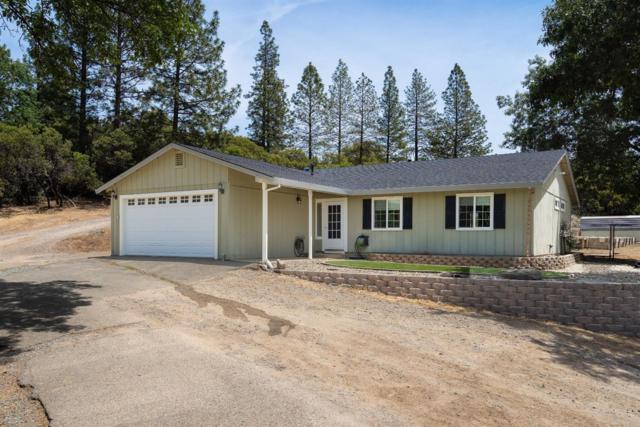 2161 Bear Rock Road, Placerville, CA 95667 (MLS #19032507) :: Heidi Phong Real Estate Team