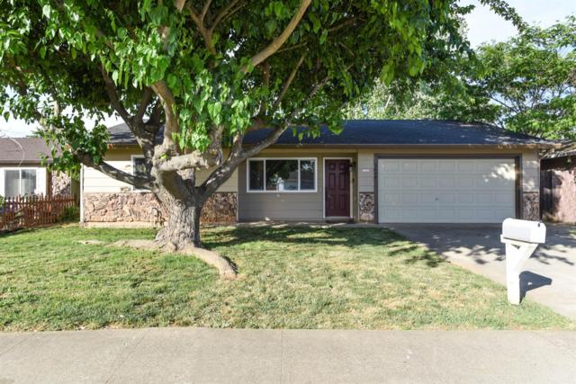 3645 Astral Drive, Sacramento, CA 95827 (MLS #19032522) :: Heidi Phong Real Estate Team