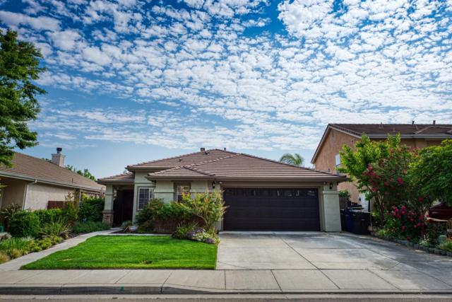 1150 Blue Heron Drive, Patterson, CA 95363 (MLS #19032816) :: Heidi Phong Real Estate Team