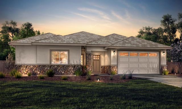 1714 Shakeley Lane, Ione, CA 95640 (MLS #19032897) :: Heidi Phong Real Estate Team