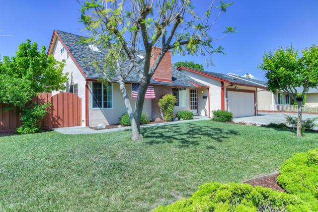 385 Conestoga Way, San Jose, CA 95123 (MLS #19032914) :: The MacDonald Group at PMZ Real Estate