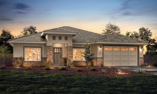 395 Avalon Drive, Ione, CA 95640 (MLS #19032916) :: Heidi Phong Real Estate Team