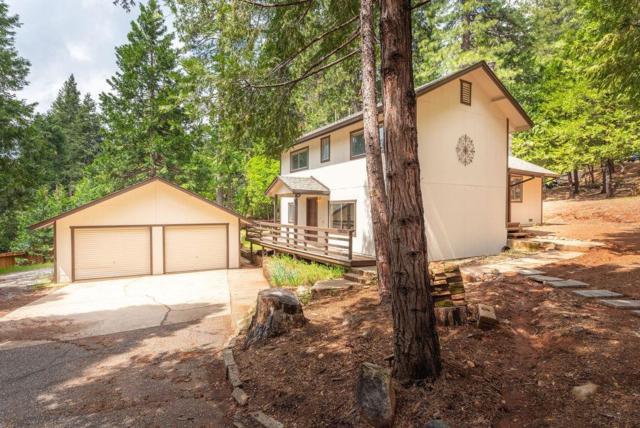 16714 Meadow Vista Drive, Pioneer, CA 95666 (MLS #19032984) :: Keller Williams - Rachel Adams Group