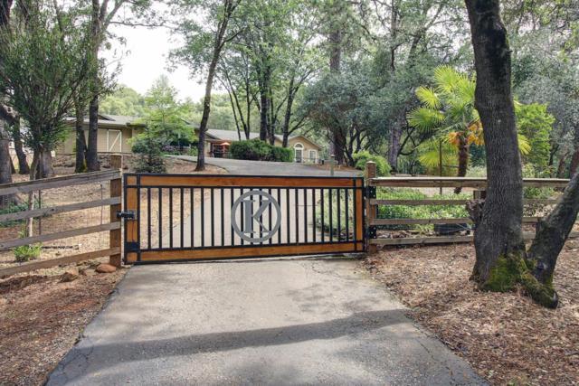 17814 Bluebird Lane, Meadow Vista, CA 95722 (MLS #19033140) :: The Merlino Home Team