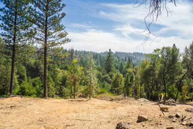 10449 Lime Kiln, Grass Valley, CA 95949 (MLS #19033300) :: eXp Realty - Tom Daves
