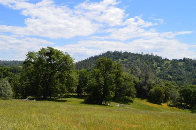 19529 Peyton Place, Grass Valley, CA 95949 (MLS #19033358) :: The MacDonald Group at PMZ Real Estate