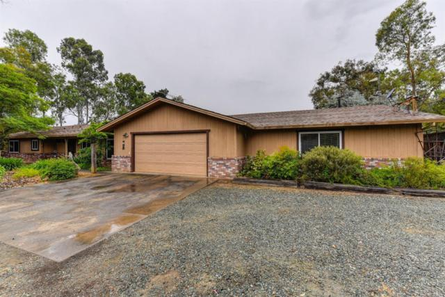 11730 Clay Station Road, Herald, CA 95638 (MLS #19033394) :: Keller Williams - Rachel Adams Group