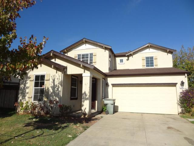 2045 N Moss Oak Way, Stockton, CA 95205 (MLS #19033405) :: Heidi Phong Real Estate Team