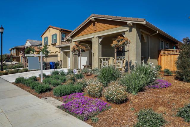 916 Pendleton, Oakley, CA 94531 (MLS #19033450) :: Heidi Phong Real Estate Team