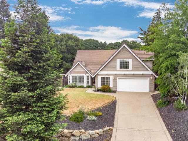 1336 Downieville Drive, El Dorado Hills, CA 95762 (MLS #19033470) :: The Home Team