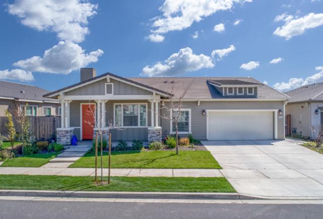 2759 Mustang Drive, Oakdale, CA 95361 (MLS #19033644) :: The Home Team