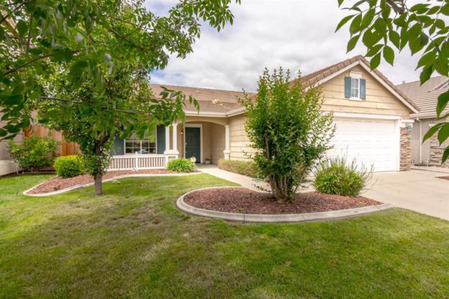 3325 Creek Bed Court, Modesto, CA 95355 (MLS #19033685) :: Heidi Phong Real Estate Team