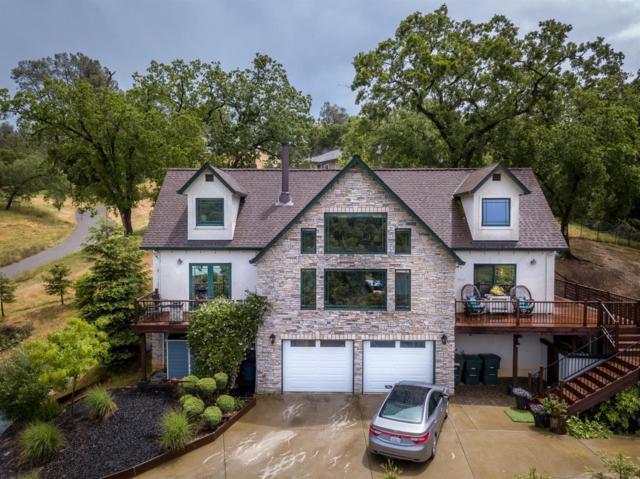 1232 Jackson Gate Rd, Jackson, CA 95642 (MLS #19033707) :: Heidi Phong Real Estate Team