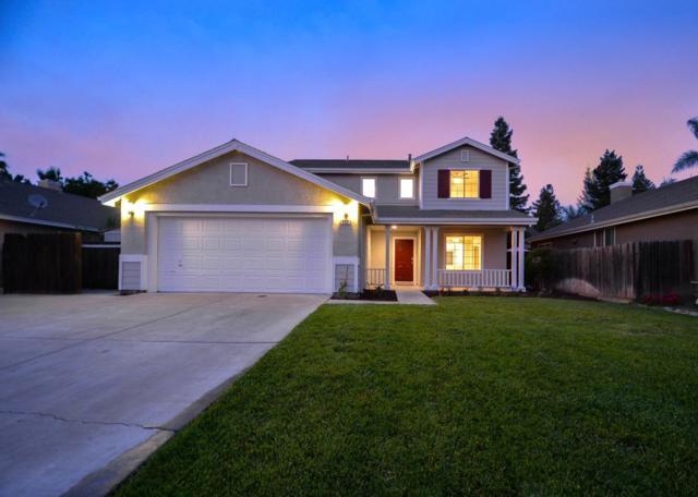 432 Peregrine Drive, Patterson, CA 95363 (MLS #19033780) :: Heidi Phong Real Estate Team
