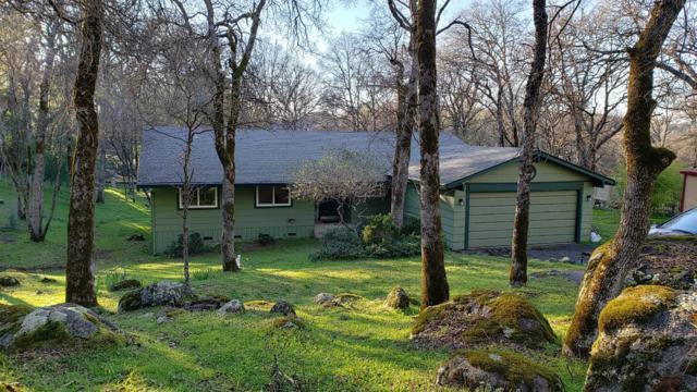 14116 Lodgepole Drive, Penn Valley, CA 95946 (MLS #19033838) :: Keller Williams - Rachel Adams Group