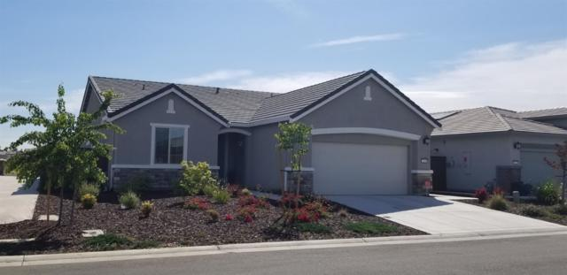 7436 Golden Stars Way, Sacramento, CA 95829 (MLS #19033887) :: Heidi Phong Real Estate Team