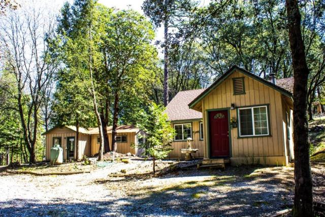 12825 Tabeaud Road, Pine Grove, CA 95665 (MLS #19033891) :: Dominic Brandon and Team