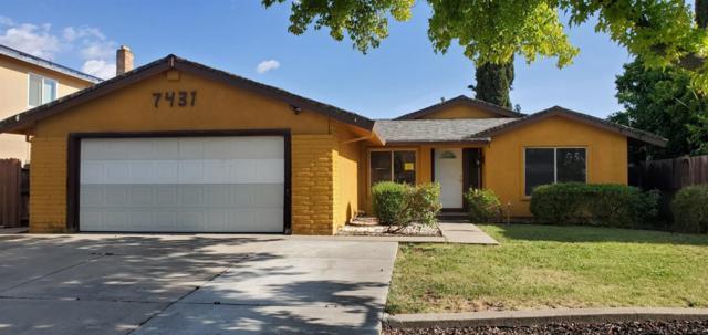 7431 Patero Circle, Sacramento, CA 95823 (MLS #19034014) :: Heidi Phong Real Estate Team