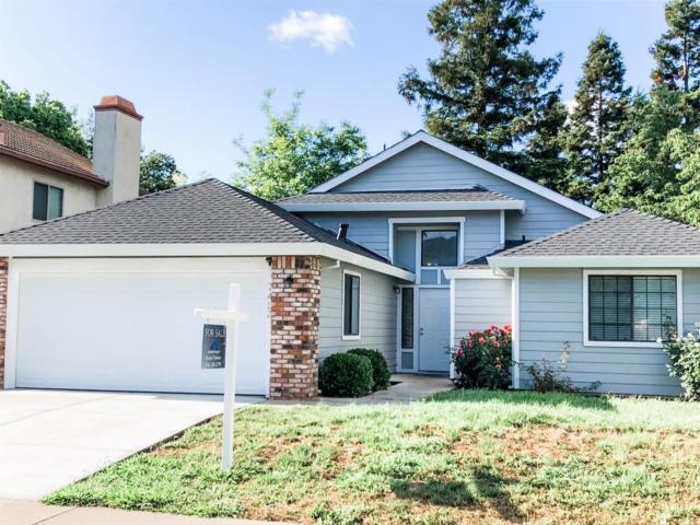 7423 Brandamore Court, Elk Grove, CA 95758 (MLS #19034024) :: Heidi Phong Real Estate Team