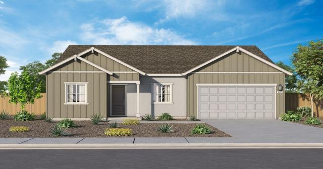 1583 Battle Force Street, Manteca, CA 95337 (MLS #19034045) :: Heidi Phong Real Estate Team