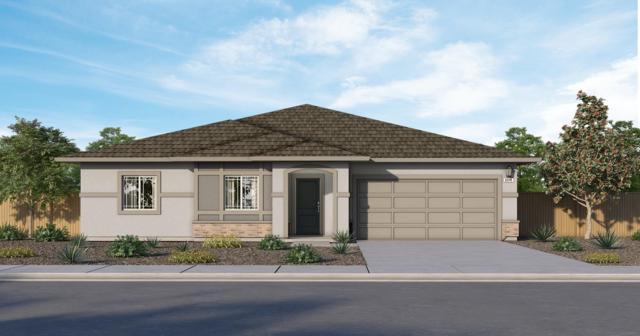 1626 Battle Force Street, Manteca, CA 95337 (MLS #19034054) :: Heidi Phong Real Estate Team