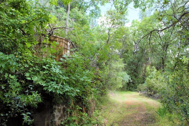 0 Cattle Drive Trail, Columbia, CA 95310 (MLS #19034065) :: Heidi Phong Real Estate Team