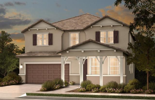 8413 Kastanis Way, Elk Grove, CA 95758 (MLS #19034067) :: Heidi Phong Real Estate Team