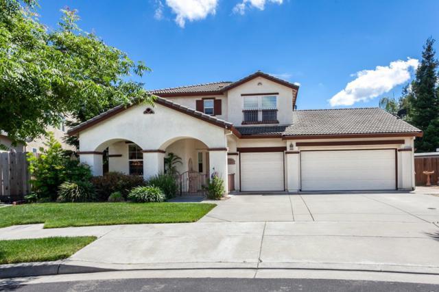 1329 Oak Leaf Circle, Oakdale, CA 95361 (MLS #19034386) :: The Home Team