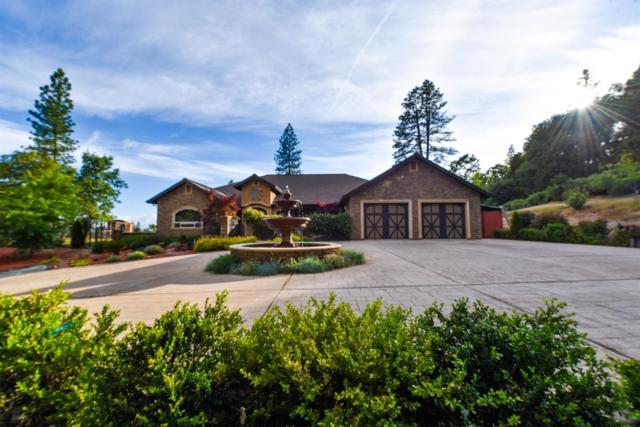 13707 Petersen Ranch Drive, Pine Grove, CA 95665 (MLS #19034397) :: eXp Realty - Tom Daves