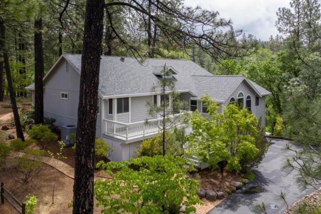 17080 Loganberry Court, Meadow Vista, CA 95722 (MLS #19034400) :: The Merlino Home Team