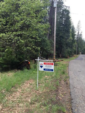 4941 Meadow Glen Dr., Grizzly Flats, CA 95636 (MLS #19034547) :: Dominic Brandon and Team