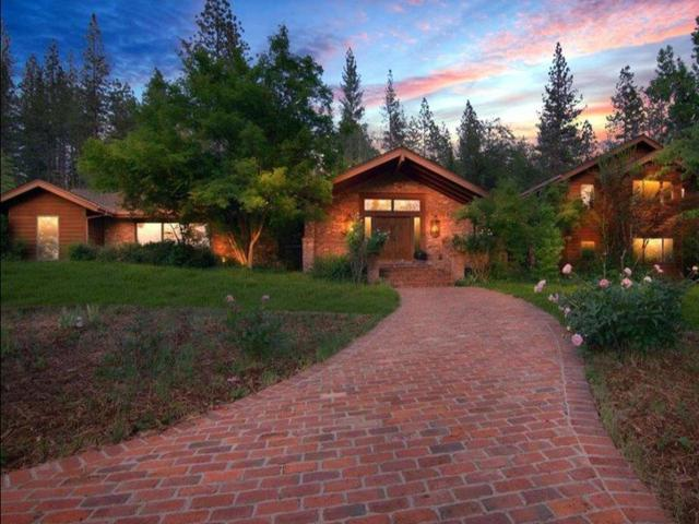 13655 Thoroughbred Loop, Grass Valley, CA 95949 (MLS #19034609) :: Dominic Brandon and Team