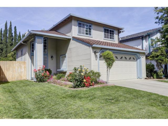 8135 Sheehan Way, Antelope, CA 95843 (MLS #19034731) :: eXp Realty - Tom Daves