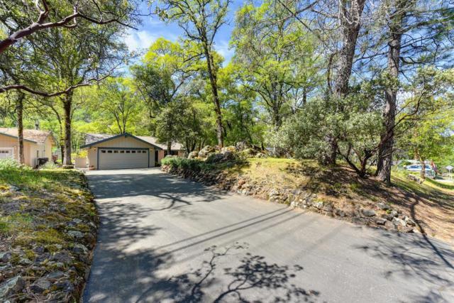 14170 Torrey Pines Drive, Auburn, CA 95602 (MLS #19034771) :: Keller Williams Realty