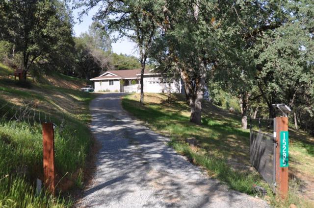 15285 Wild Oak Lane, Auburn, CA 95603 (MLS #19034781) :: The Merlino Home Team