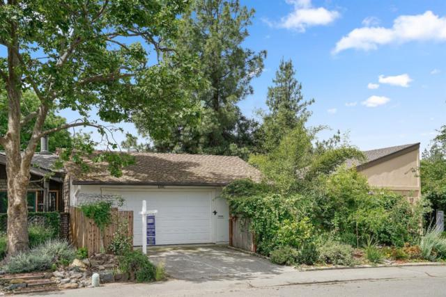 2131 Bueno Drive, Davis, CA 95616 (MLS #19034813) :: Dominic Brandon and Team