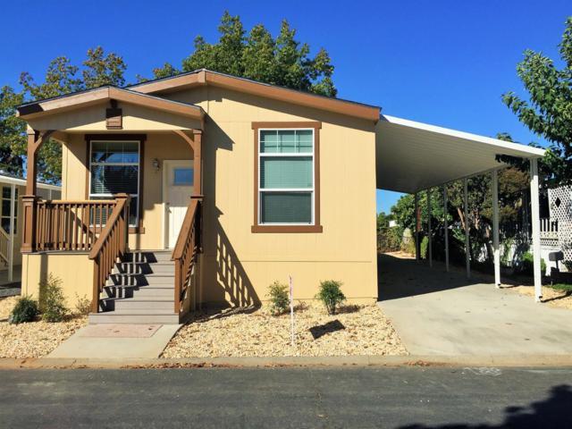 160 Dutchess Way, Sacramento, CA 95827 (MLS #19034951) :: REMAX Executive