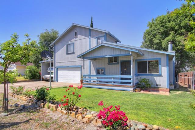 8839 Steven Avenue, Orangevale, CA 95662 (MLS #19034972) :: eXp Realty - Tom Daves